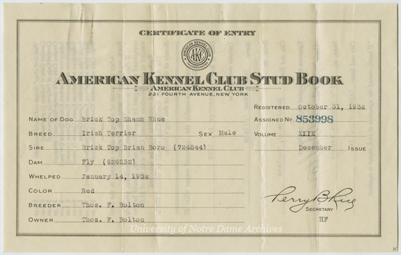 UPCO 8/01:  American Kennel Club Stud Book Certificate of Entry for Irish terrier mascot Brick Top Shaun Rhue, listing his history and lineage, 1932/1119.