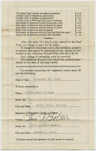 UPCO 8/01:  American Kennel Club Stud Book Certificate of Entry for Irish terrier mascot Brick Top Shaun Rhue, 1932/1119.  Verso of the document transferring ownership from Thomas Bolton to Notre Dame.