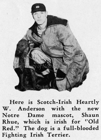 "Football Coach Heartley ""Hunk"" Anderson with Irish Terrier mascot Brick Top Shaun Rhue, 1932"